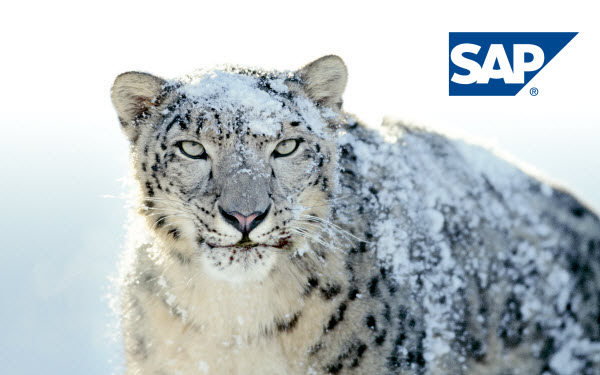 SAP BusinessObjects Snow Leopard edition?